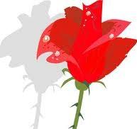Be Like a Rose