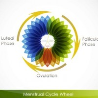 Intimate relationship with a woman during her Menstruation